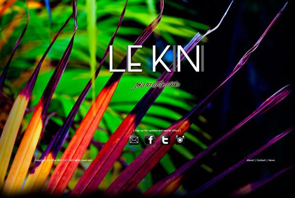 PPC-Portfolio-LeKini