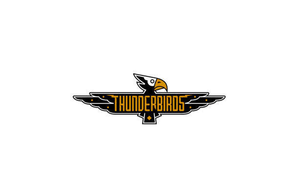 LA-Thunderbirds-Logo-Design-Downey